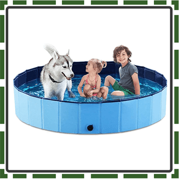 Best Foldable Swimming Pool for Kids